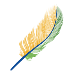 Brazil flag feather