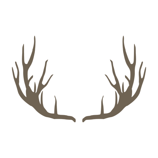 Deer horn Transparent PNG