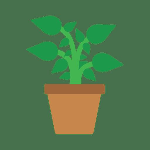 Flat flower plant tub