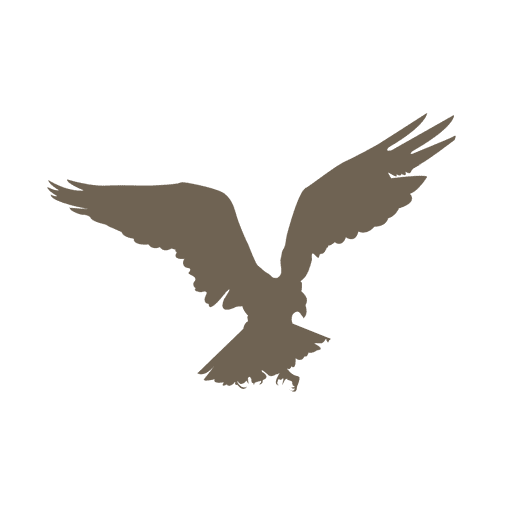 Flying eagle silhouette Transparent PNG