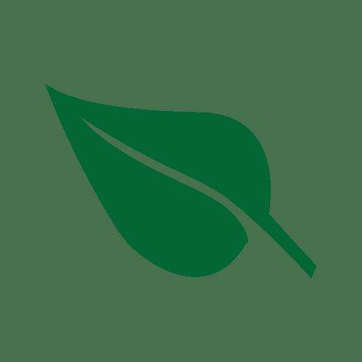 Green st patrick leaf