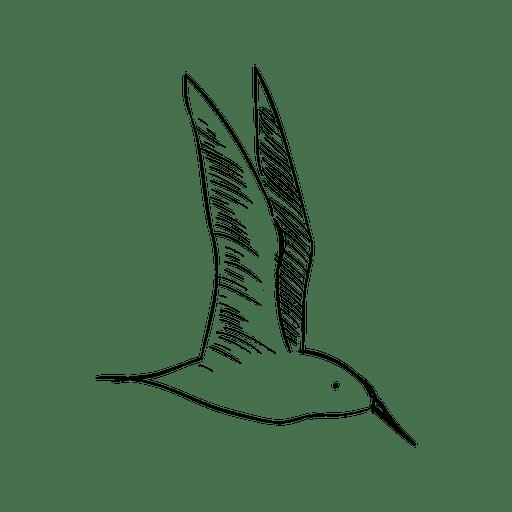 Dibujo a mano pájaro volador Transparent PNG