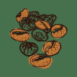 grãos de café desenhados mão