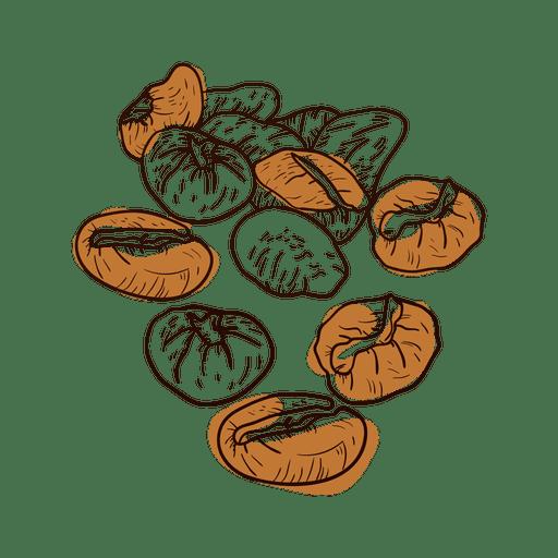 Grãos de café desenhados à mão