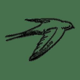 Dibujado a mano volando golondrina