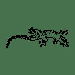 Hand gezeichneter Leguan