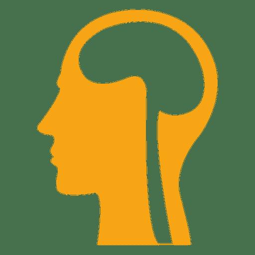 Human brain skull sign
