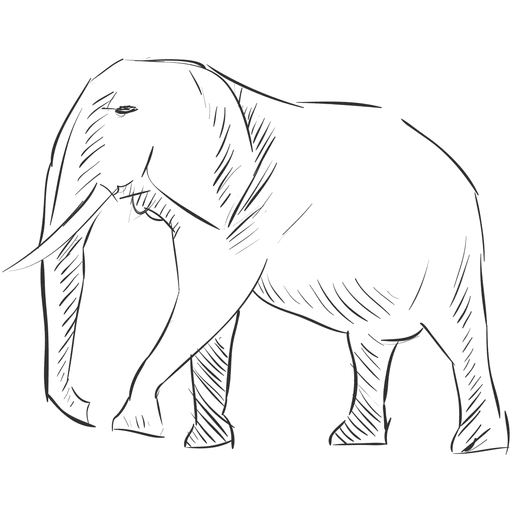 Dibujo A Lápiz Elefante Descargar Pngsvg Transparente