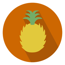 Pineapple sliced circle icon