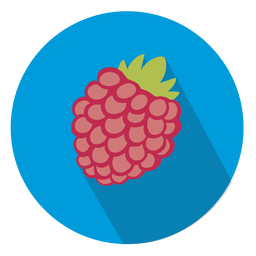 Raspberry fruit circle icon