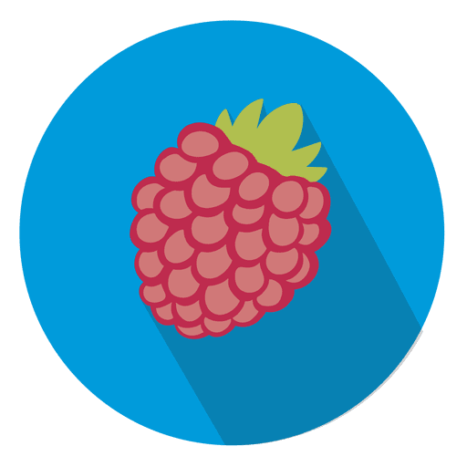 Raspberry fruit circle icon Transparent PNG