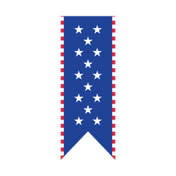 Stars usa print ribbon
