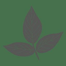 Ash leaves line silhouette