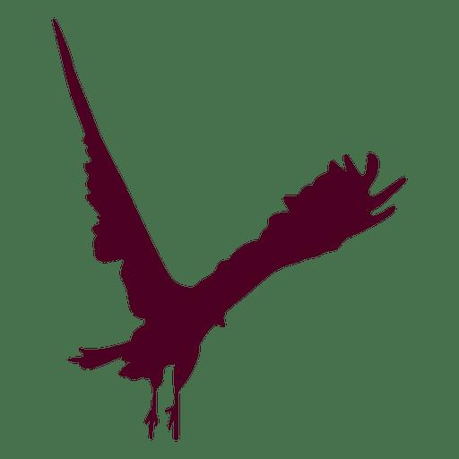 Flying Eagle Design Transparent PNG