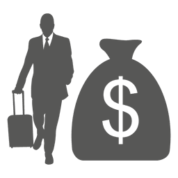 Business tour dollar bag icon