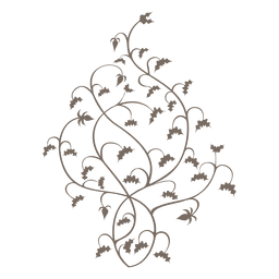 Curly floral swirls decoration