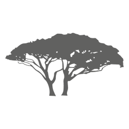 Exotischer Baum Silhouette