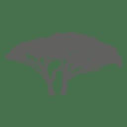 Silhueta de árvore exótica