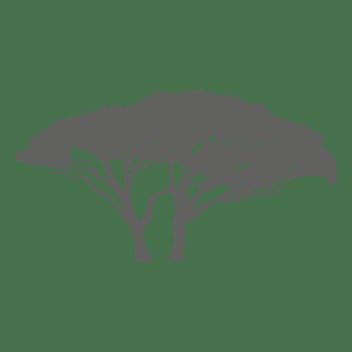 Silhueta de árvore exótica Transparent PNG