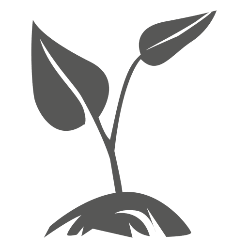 Icono de la planta de crecimiento Transparent PNG