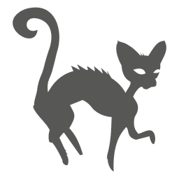 Halloween witch cat silhouette
