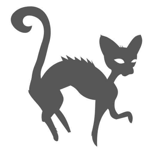 Halloween witch cat silhouette - Transparent PNG & SVG vector