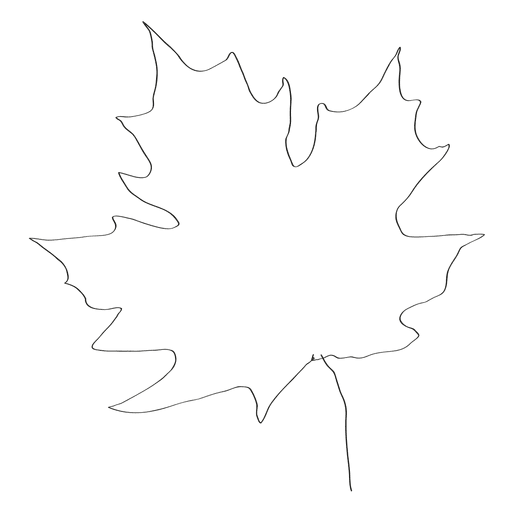 Hand drawn maple leave Transparent PNG