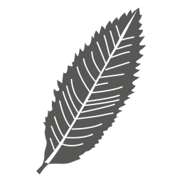 Lanceolate leaf line style
