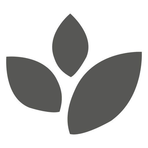Leaves flat icon Transparent PNG