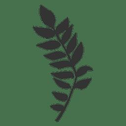 Manchurian walnut leaf line style