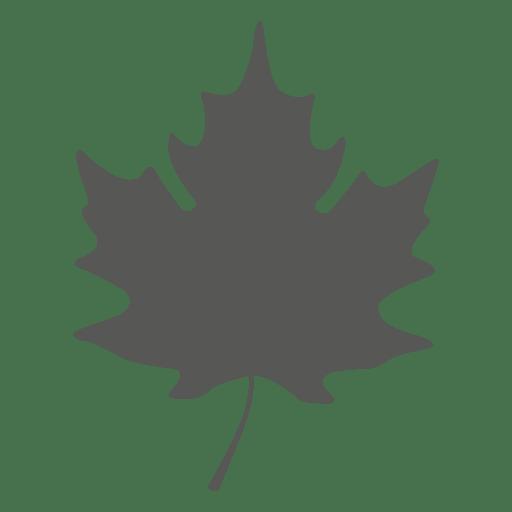 Simple maple leave silhouette