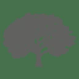 Silueta del árbol de arce 1