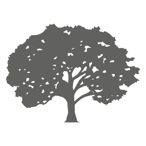 Maple tree silhouette 1