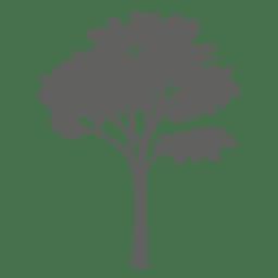 Silhueta de árvore de maple 2