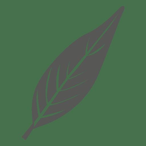 Oblanceolate leaf line style