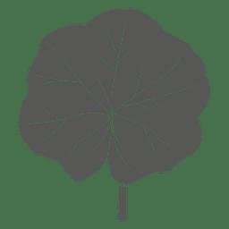 Philodendron line stroke leaf