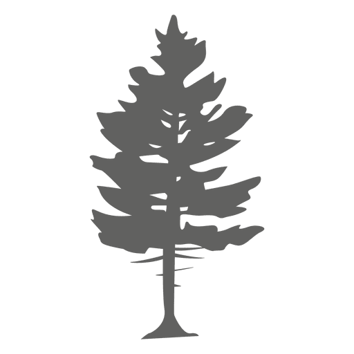 Pine tree silhouette 2 - Transparent PNG & SVG vector