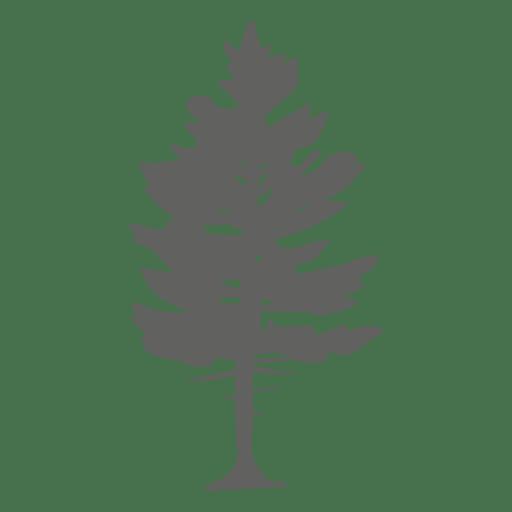 Pine tree silhouette 2