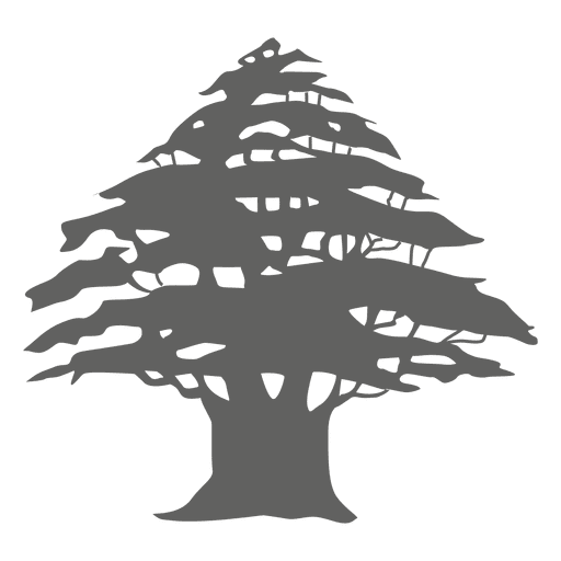Pine tree silhouette 3 Transparent PNG