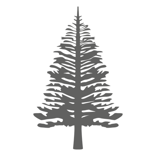 Silueta de pino 4