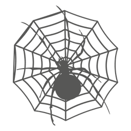 Aranha na silhueta da web