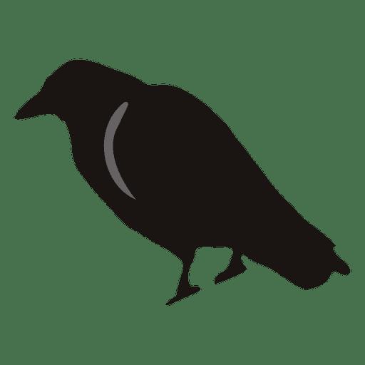 Desenhos animados do corvo assustador 1 Transparent PNG