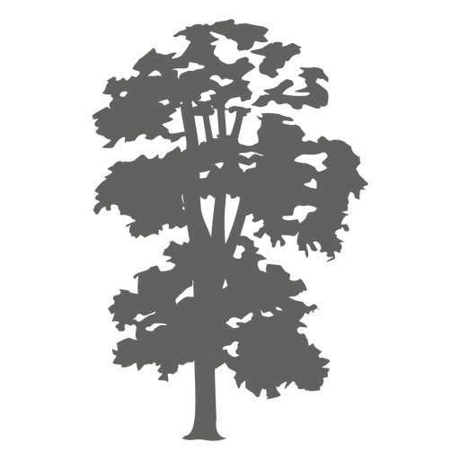 Tree silhouette 3 Transparent PNG