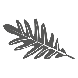 Weiße Eichenblattlinie Art