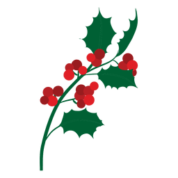 Mistletoe branch icon 15