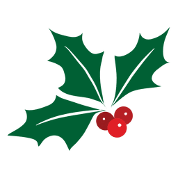 Mistletoe icon 14