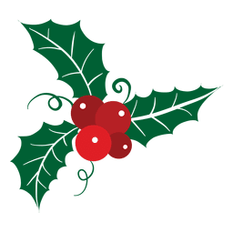 Mistletoe icon 18
