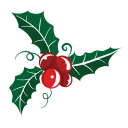 Mistletoe icon 19