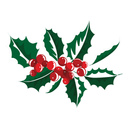 Mistletoe icon 8
