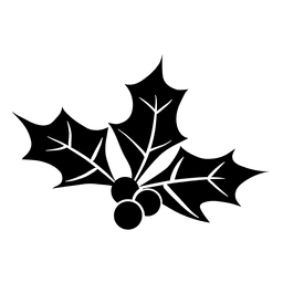 Mistletoe silhouette icon 29